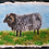 Thumbnail: Woolly Ram - By Paper et Paint