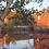 Thumbnail: Harrisville DesignsNew Loom Studio Package