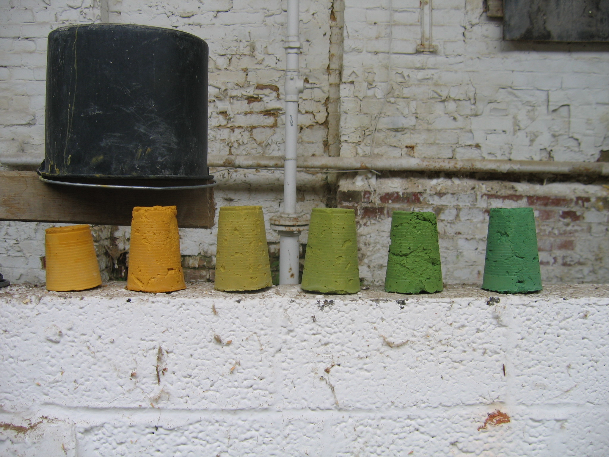 Pigmentation Experiments