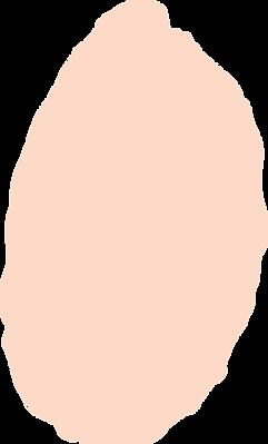 Modista-Shape-59.png