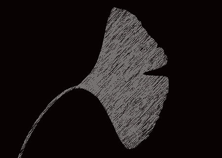 ginkgo-bk.jpg