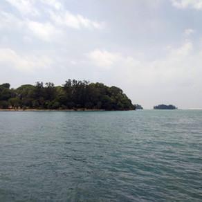 Diving In Singapore: St. John's Island