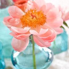 Floral Design of Europe seasonal inspiration