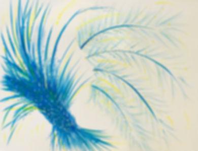 les plumes bleues - Copie.jpg
