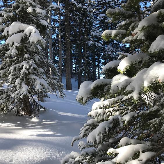 Winter Day-Long Soul Quest