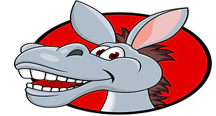oval donkey head.jpg