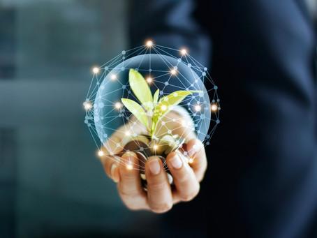 1ère Plateforme Digitale pour une filière plus responsable et des jardins plus connectés...