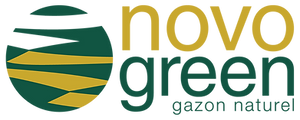Logotipos idiomas fr.png