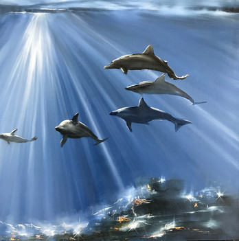 Dolphins can swim