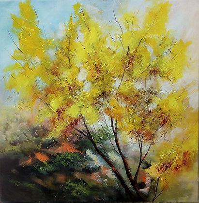 L'autunno dei miei alberi 3