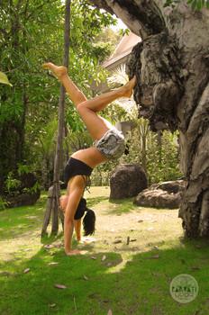 Handstand Hollowback Vinyasa