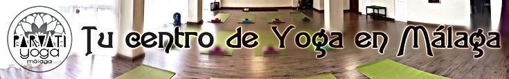 Parvati Yoga Malaga Vinyasa Flow Hatha Yoga Yin Yoga Restorativo