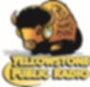 logo-YPR-lg.jpg