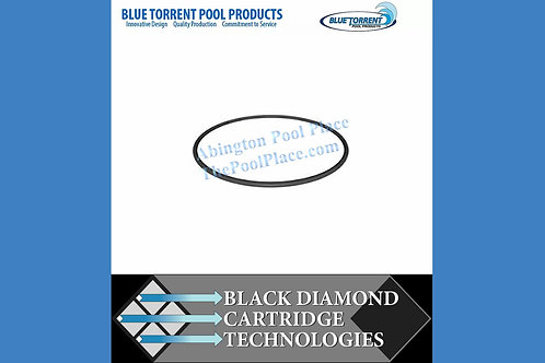 Blue Torrent Hurricane Pump Cover O-Ring