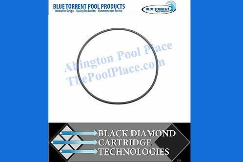 Black Diamond Filter Head O-Ring