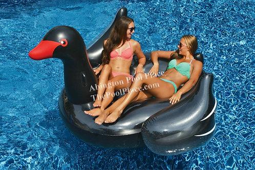 "Giant Black Swan 79"""