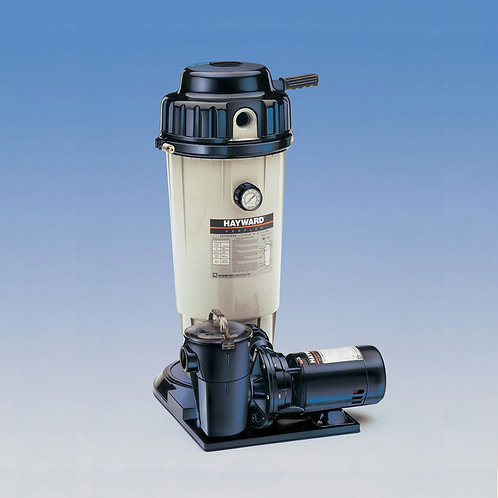Hayward EC-50 Filter System