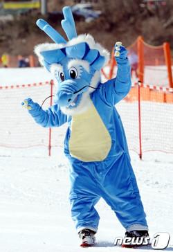 2012 스키에이트 용