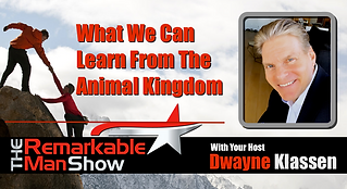 What We Can Learn From The Animal Kingdo