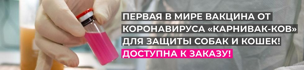 HEAD_КАРНИВАК-КОВ.png