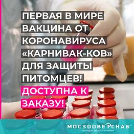 КАРНИВАК-КОВ-smm-1.png