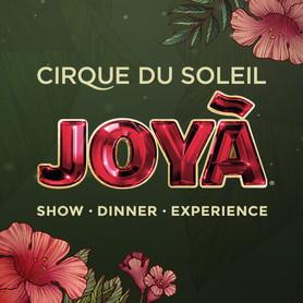 Joyà, Cirque du Soleil