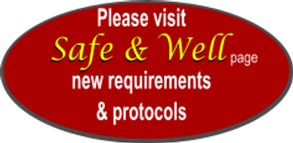Safe well logo trans.png