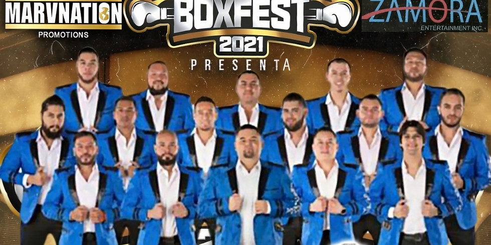 Box Fest 2021