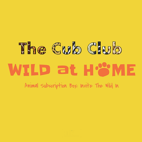 The Cub Club Tiny Zoologist Box