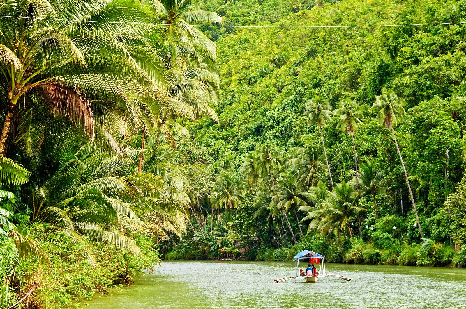 bigstock-Cruising-boat-on-Rainforest-Ri-25889867