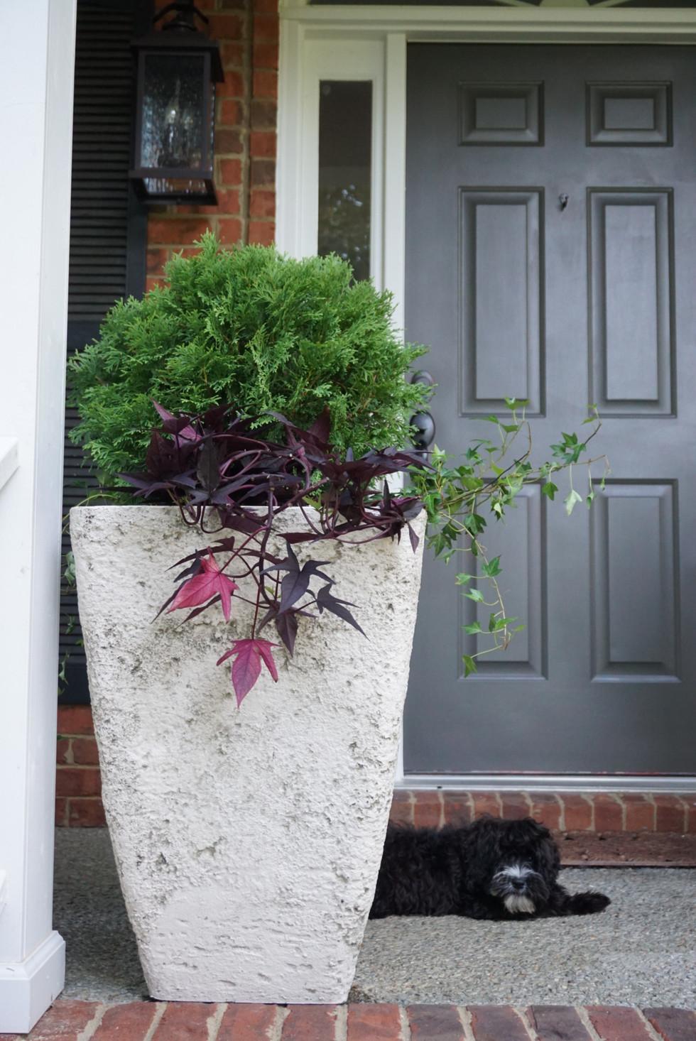 Front Porch Planter Project