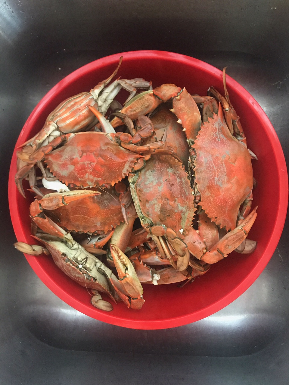 Wednesday Wonders: How Do We Catch All of Those Blue Crabs?