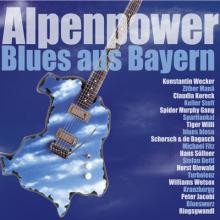 Alpenpower 2012_400_web.jpg