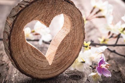 houten hart, boomstam met hart, hout, hart, hart uit boom, bloem hart hout.