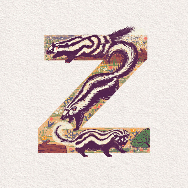 Z is for Zorilla