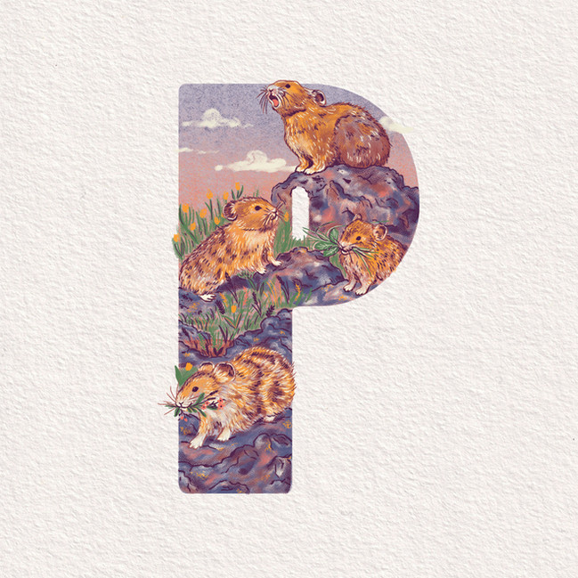 P is for Pika