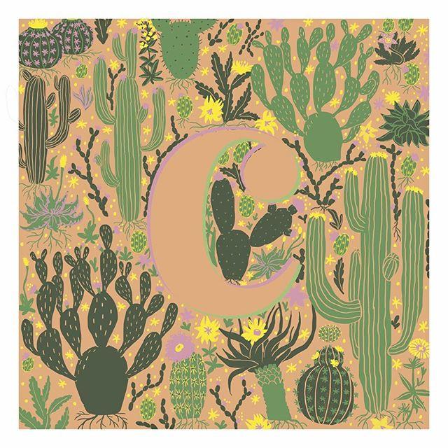 C like cacti