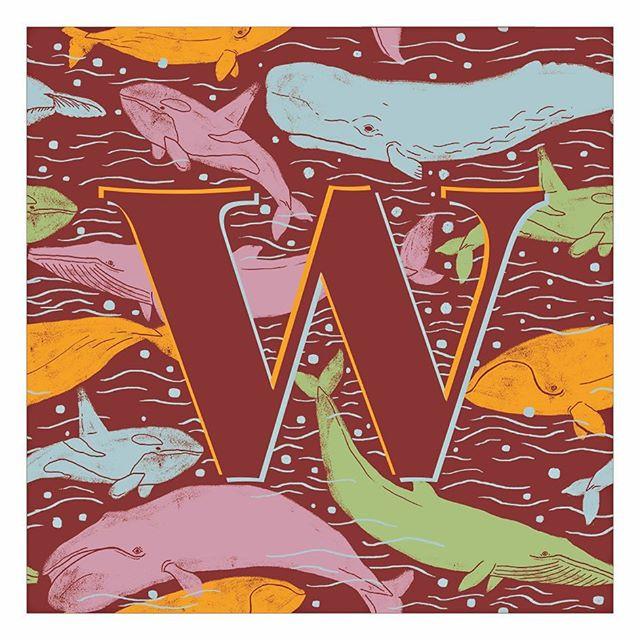 W like whales 🐳