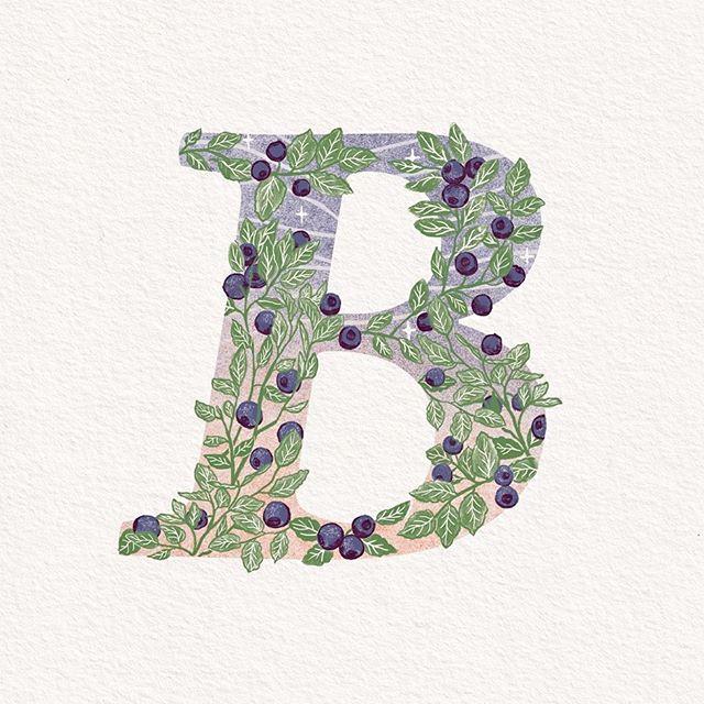 B like Bilberry