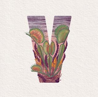 V is for Venus Flytrap