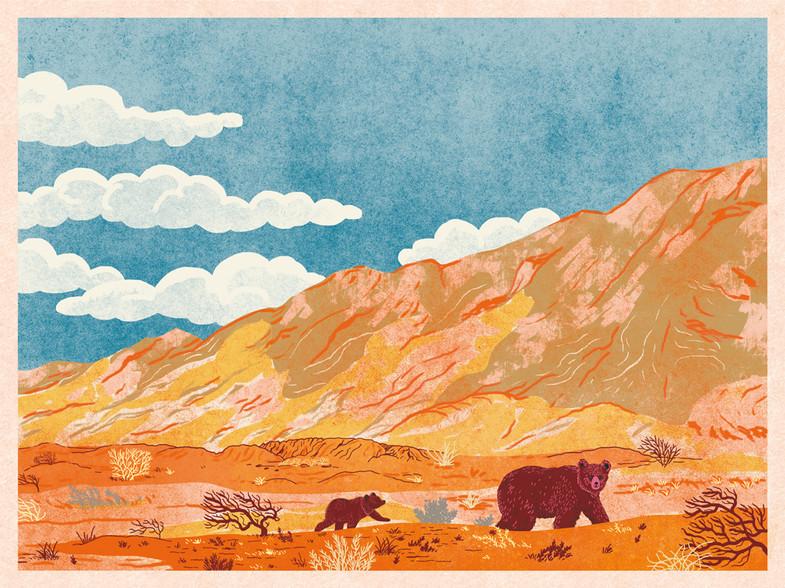 Bears of the Gobi Desert