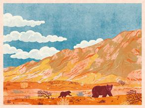 Gobi Bears' Desert