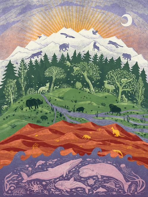 Illustration Resurgence & Ecologist Magazine