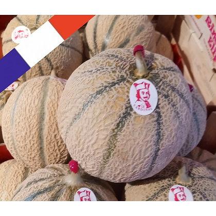 Melon type Charentais Sélection (402)