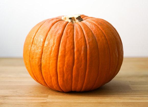 Citrouille Jack Lantern spécial Halloween
