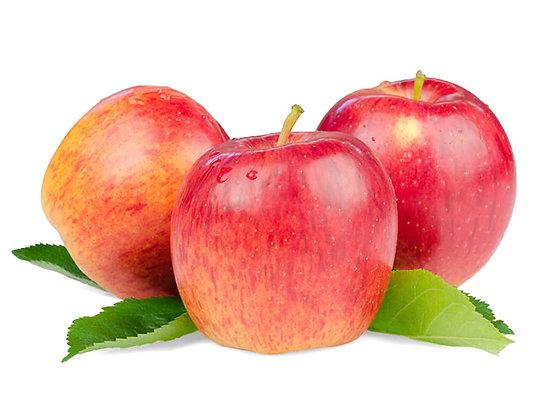 Pomme variété Royal Gala (809)