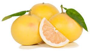 Pomelos Blanc de Floride (838)