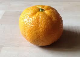 Mandarine de Sicile (453)