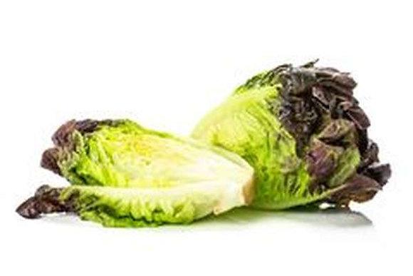 Coeur de salade SUCRINE Rouge par 6 (980)