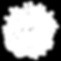 VOS-logo-web-white.png